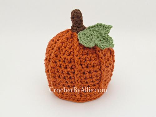 Pumpkin Patch Sizing? - Everyday Mums Chat